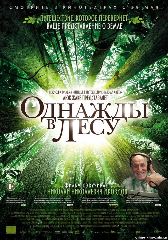 Однажды в лесу (2014) смотреть онлайн